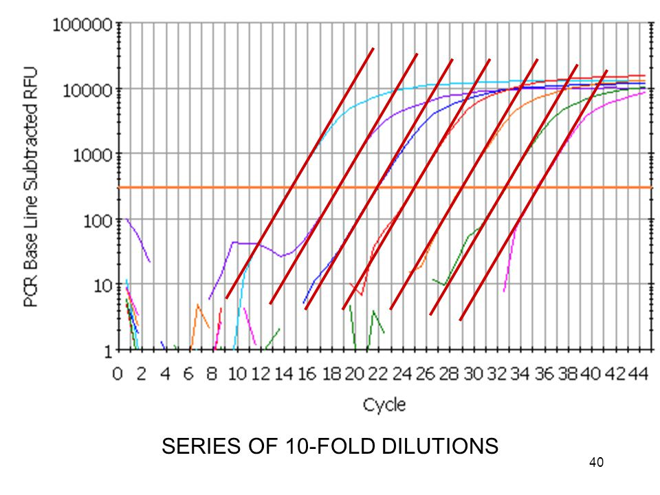 40 SERIES OF 10-FOLD DILUTIONS