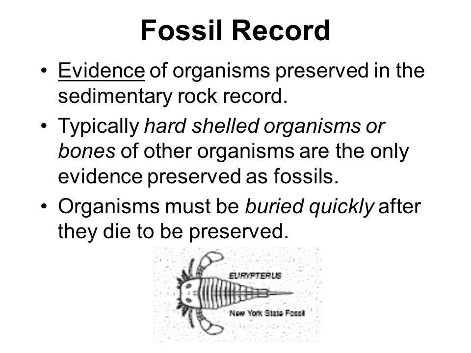Fossil Record Evidence of organisms preserved in the sedimentary rock record.
