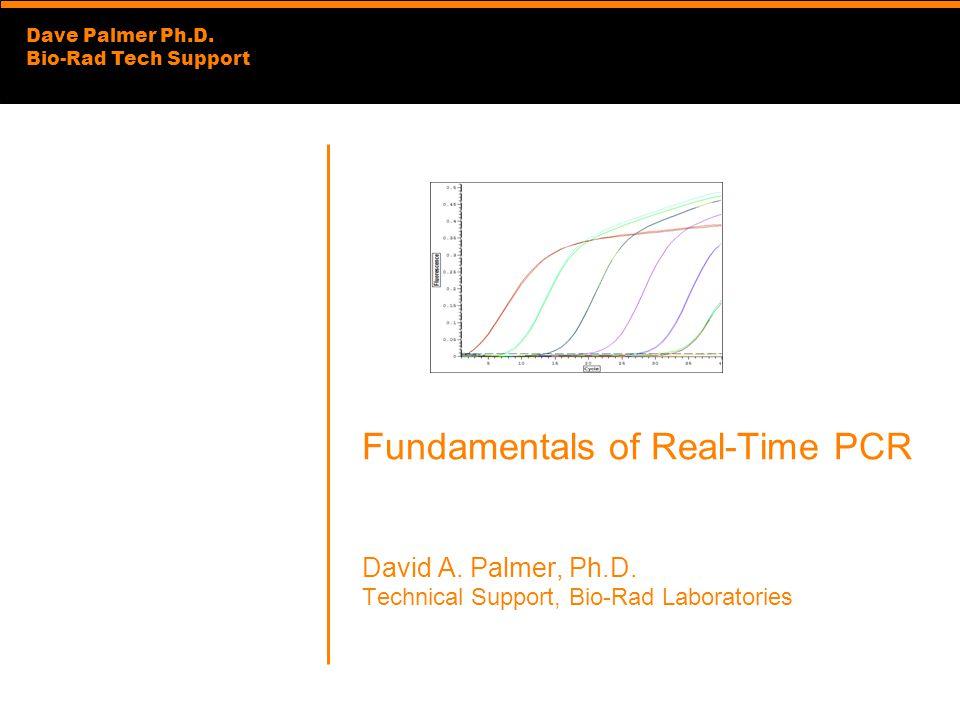 Dave Palmer Ph.D.Bio-Rad Tech Support Fundamentals of Real-Time PCR David A.