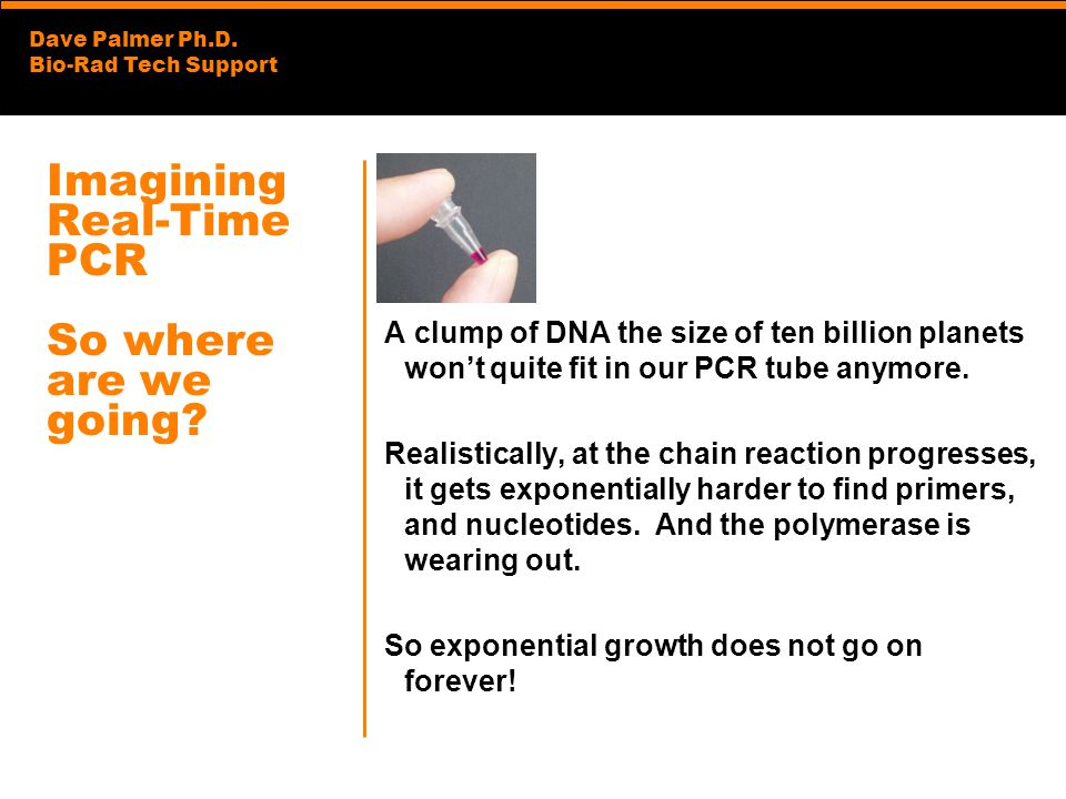 Dave Palmer Ph.D. Bio-Rad Tech Support Imagining Real-Time PCR So where are we going? A clump of DNA the size of ten billion planets wont quite fit in