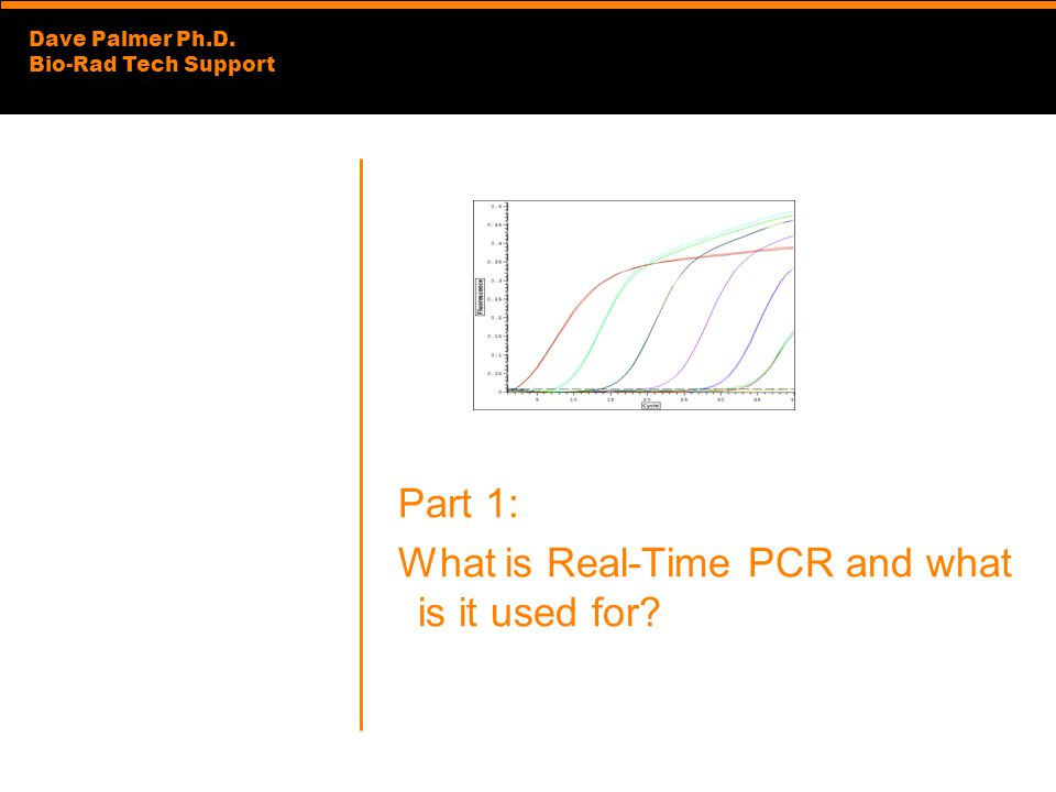 Dave Palmer Ph.D. Bio-Rad Tech Support Part 1: What is Real-Time PCR and what is it used for?