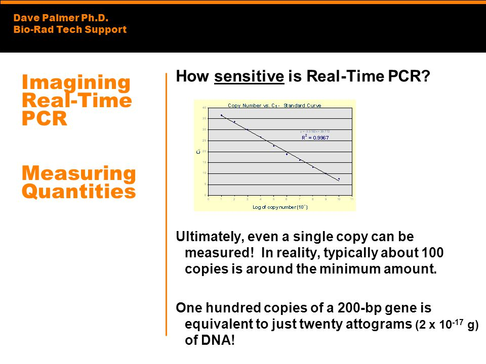 Dave Palmer Ph.D. Bio-Rad Tech Support Imagining Real-Time PCR Measuring Quantities How sensitive is Real-Time PCR? Ultimately, even a single copy can