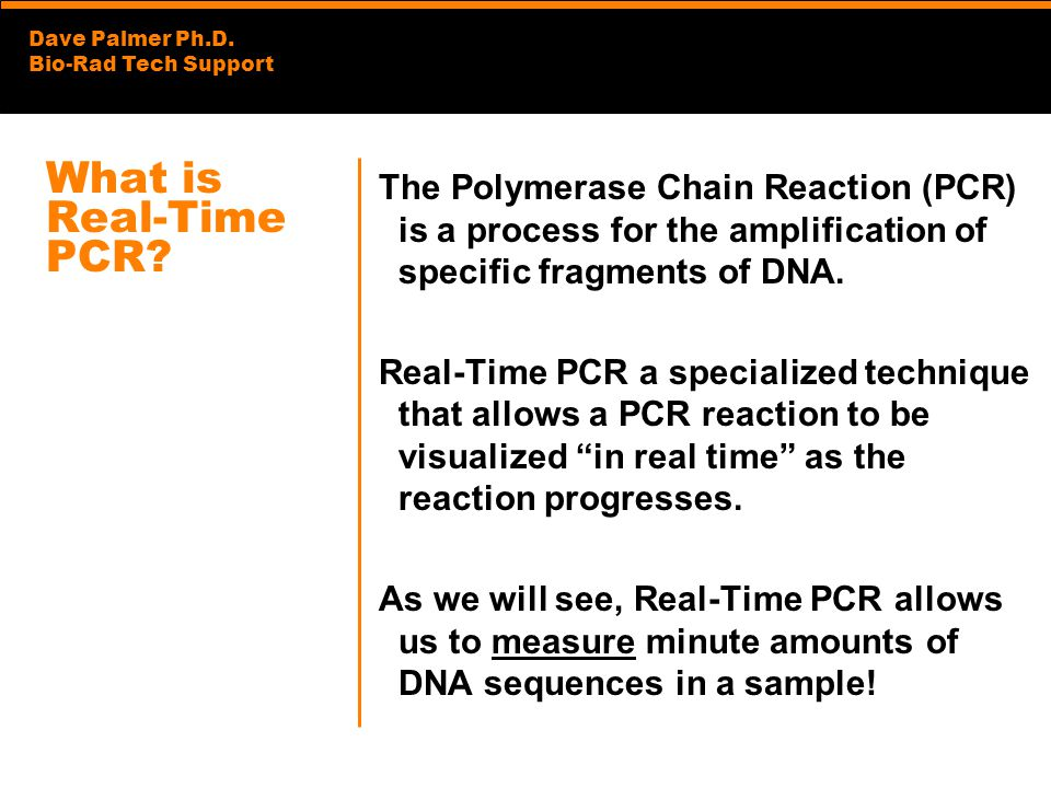 Dave Palmer Ph.D. Bio-Rad Tech Support What is Real-Time PCR? The Polymerase Chain Reaction (PCR) is a process for the amplification of specific fragm