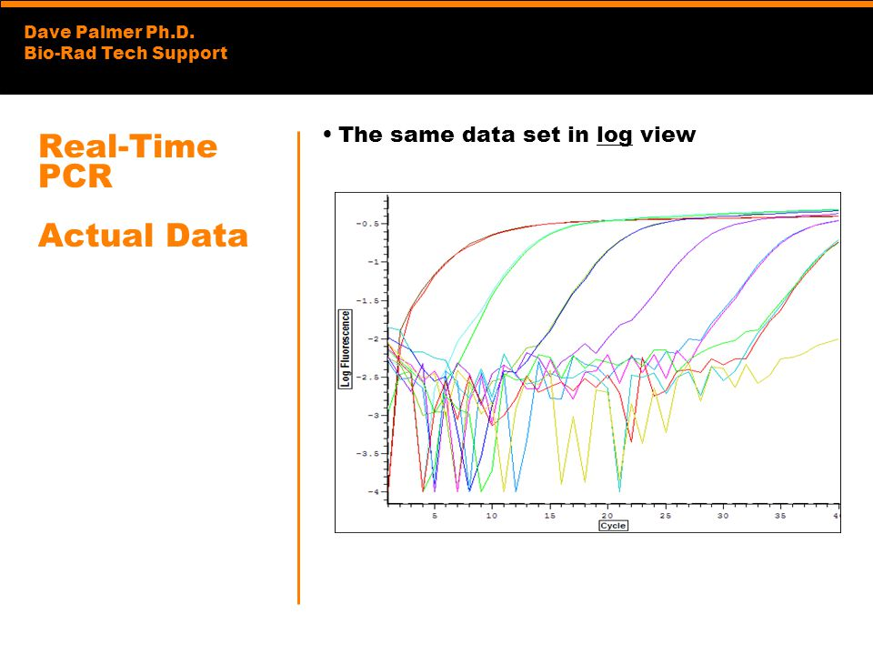 Dave Palmer Ph.D. Bio-Rad Tech Support Real-Time PCR Actual Data The same data set in log view