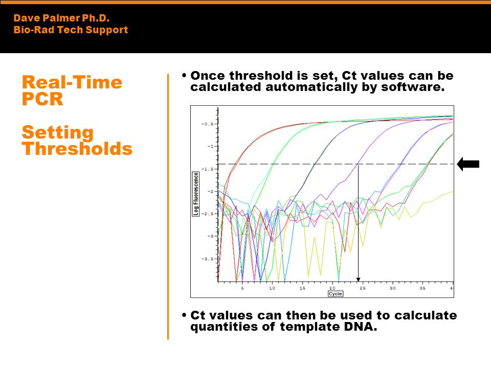 Dave Palmer Ph.D. Bio-Rad Tech Support Real-Time PCR Setting Thresholds Once threshold is set, Ct values can be calculated automatically by software.