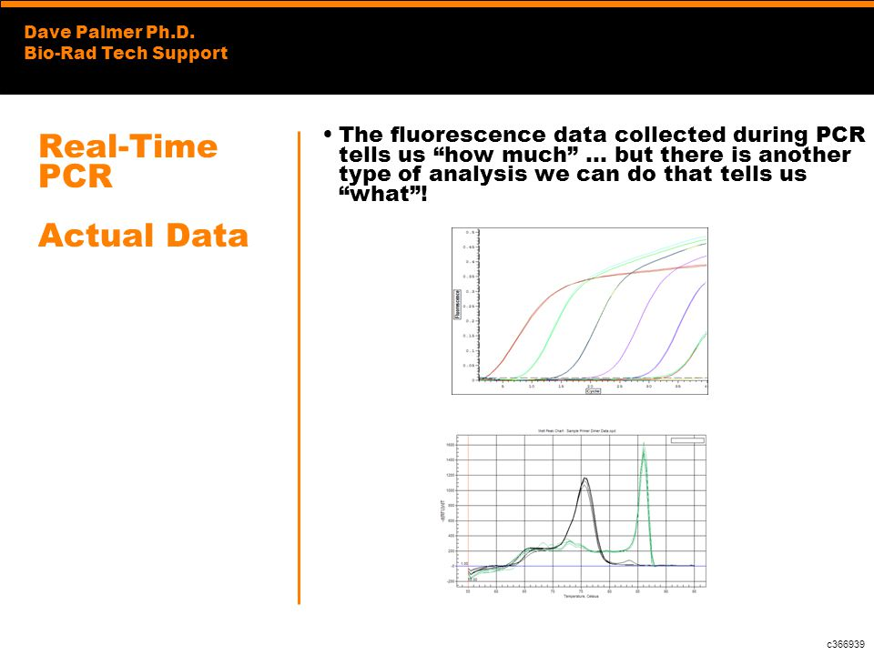 Dave Palmer Ph.D. Bio-Rad Tech Support Real-Time PCR Actual Data The fluorescence data collected during PCR tells us how much … but there is another t