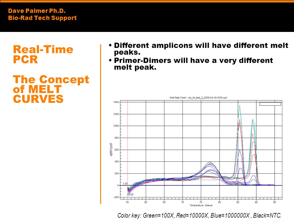 Dave Palmer Ph.D. Bio-Rad Tech Support Real-Time PCR The Concept of MELT CURVES Different amplicons will have different melt peaks. Primer-Dimers will