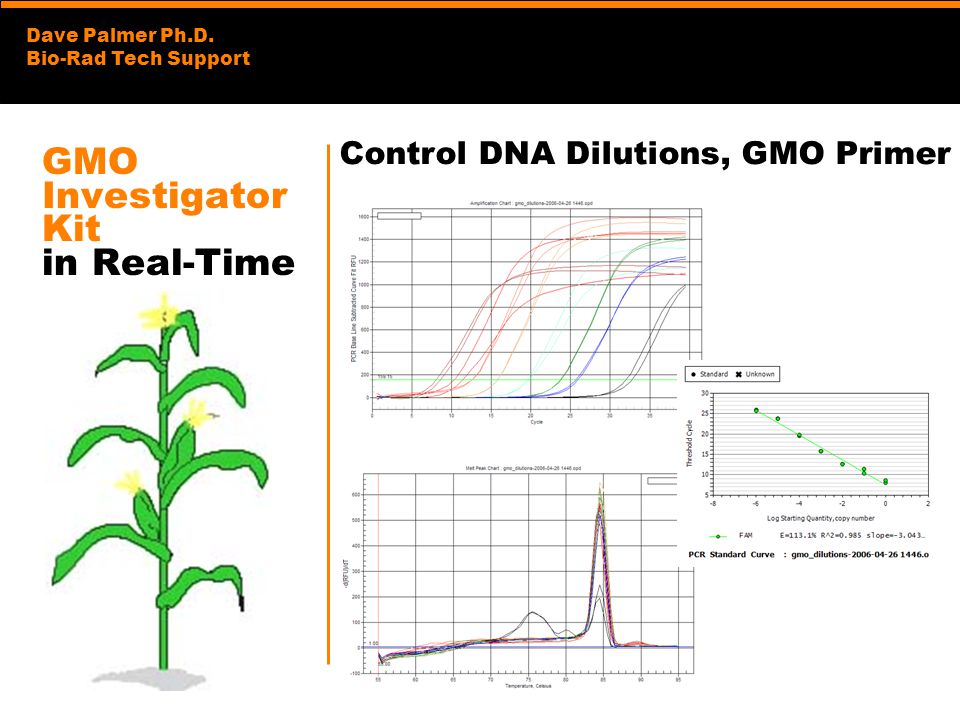 Dave Palmer Ph.D. Bio-Rad Tech Support GMO Investigator Kit in Real-Time Control DNA Dilutions, GMO Primer