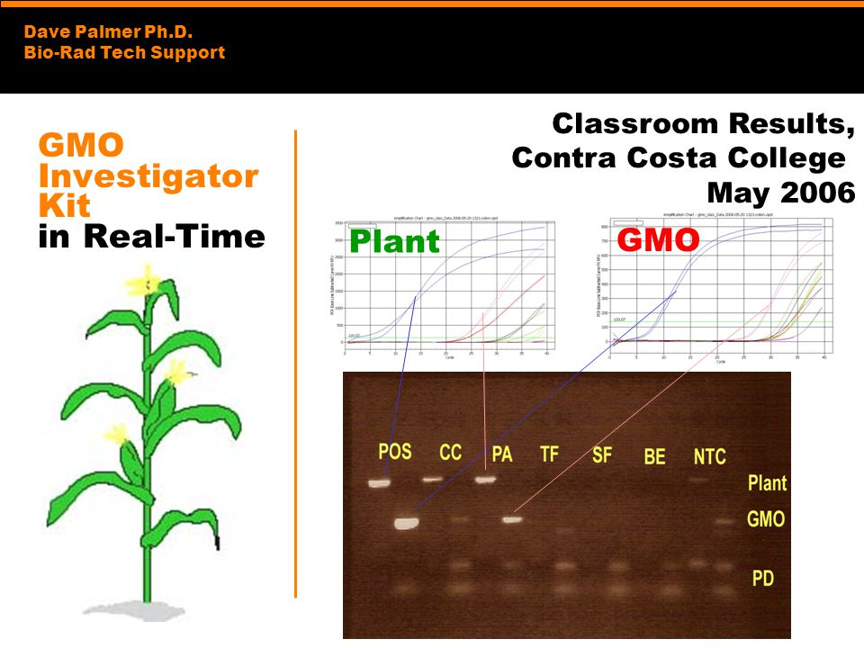 Dave Palmer Ph.D. Bio-Rad Tech Support GMO Investigator Kit in Real-Time Classroom Results, Contra Costa College May 2006 Plant GMO
