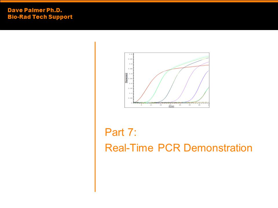 Dave Palmer Ph.D. Bio-Rad Tech Support Part 7: Real-Time PCR Demonstration