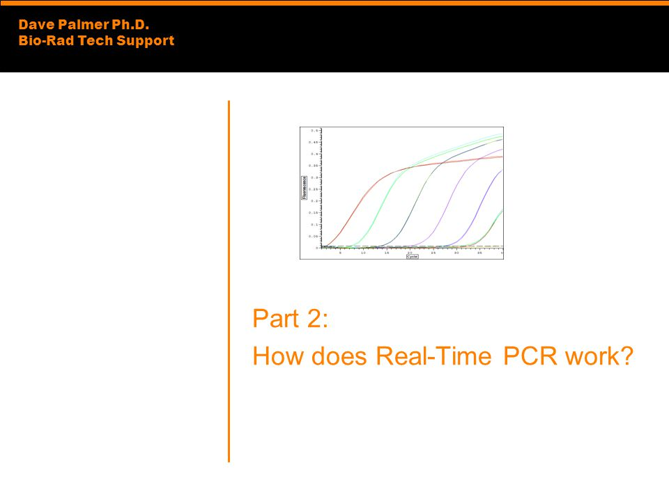 Dave Palmer Ph.D. Bio-Rad Tech Support Part 2: How does Real-Time PCR work?