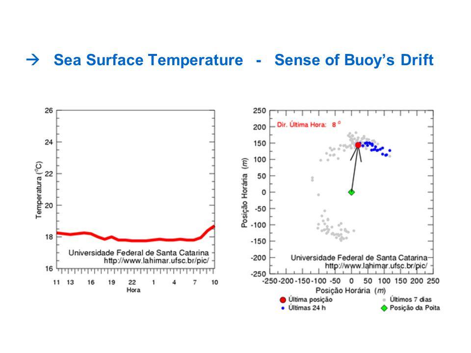 Sea Surface Temperature - Sense of Buoys Drift