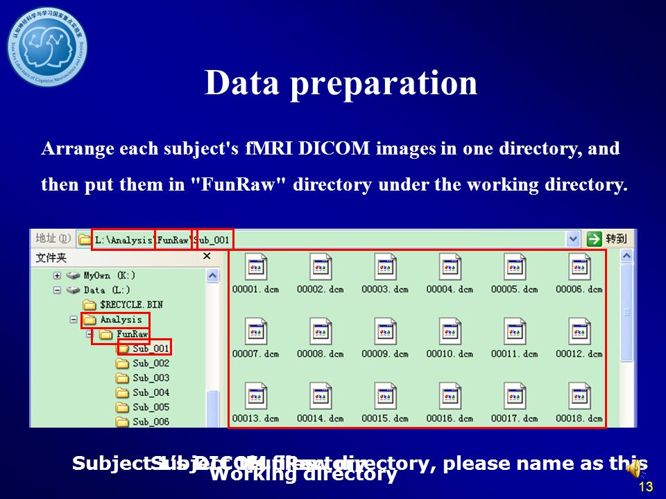 13 Data preparation Arrange each subject's fMRI DICOM images in one directory, and then put them in