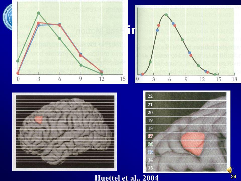 24 Slice Timing Why? Huettel et al., 2004