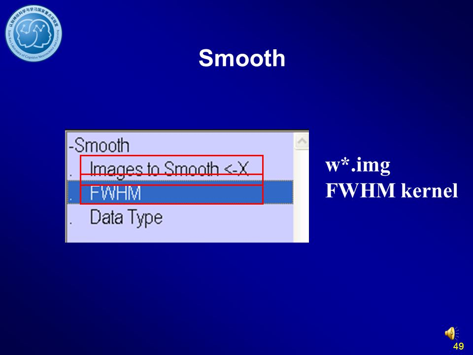 49 w*.img FWHM kernel Smooth