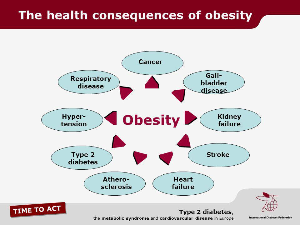 TIME TO ACT Type 2 diabetes, the metabolic syndrome and cardiovascular disease in Europe Cancer Gall- bladder disease Kidney failure Stroke Heart fail