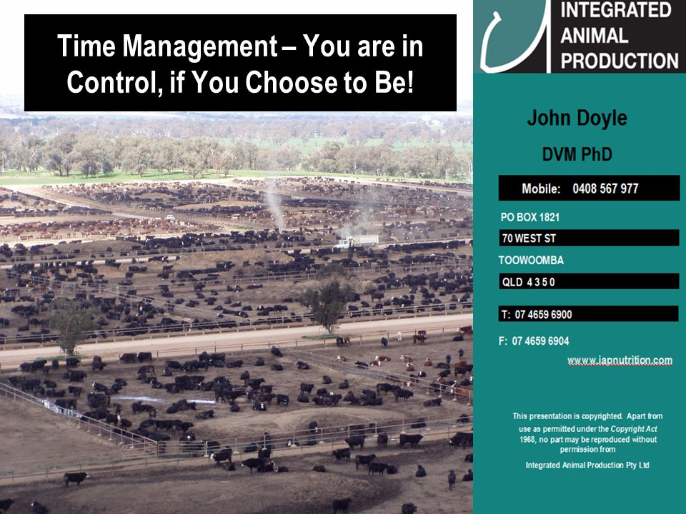 © IAP Pty Ltd 12 Feedlots Feedlots are a Production Process Production Processes are Constrained by Time Prioritize Process Steps - Most > Least Critical Action Trigger Pull = Most Critical Action within a process occurring within a short time period Execution of Trigger Pull > Consequences – good or bad