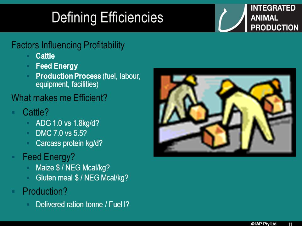 © IAP Pty Ltd 11 Defining Efficiencies Factors Influencing Profitability Cattle Feed Energy Production Process (fuel, labour, equipment, facilities) What makes me Efficient.