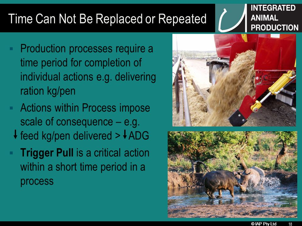 © IAP Pty Ltd 18 Time Can Not Be Replaced or Repeated Production processes require a time period for completion of individual actions e.g. delivering