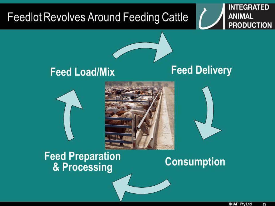 © IAP Pty Ltd 19 Feedlot Revolves Around Feeding Cattle Feed Delivery Consumption Feed Preparation & Processing Feed Load/Mix