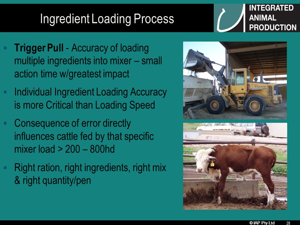 © IAP Pty Ltd 28 Ingredient Loading Process Trigger Pull - Accuracy of loading multiple ingredients into mixer – small action time w/greatest impact Individual Ingredient Loading Accuracy is more Critical than Loading Speed Consequence of error directly influences cattle fed by that specific mixer load > 200 – 800hd Right ration, right ingredients, right mix & right quantity/pen
