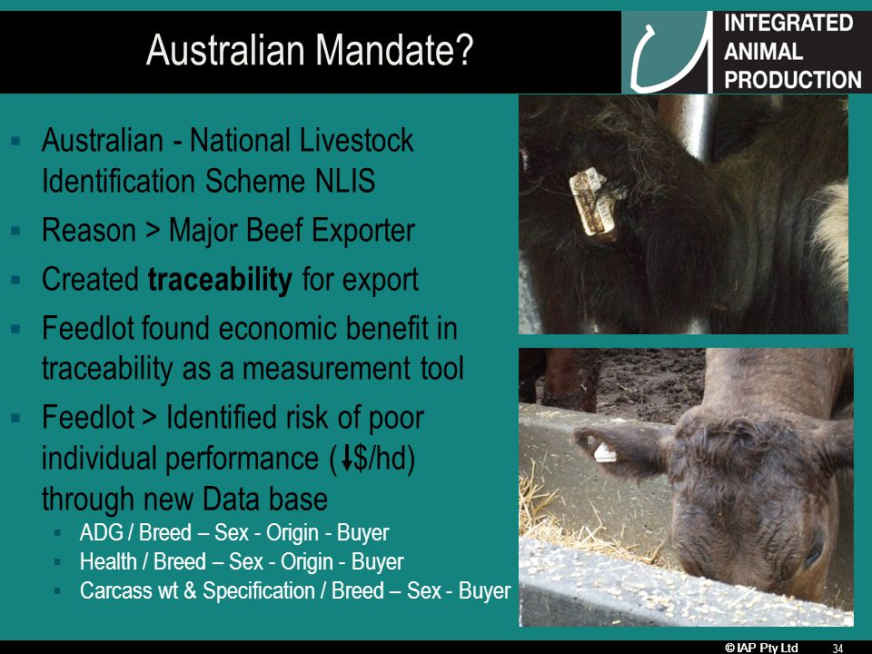 © IAP Pty Ltd 34 Australian Mandate? Australian - National Livestock Identification Scheme NLIS Reason > Major Beef Exporter Created traceability for