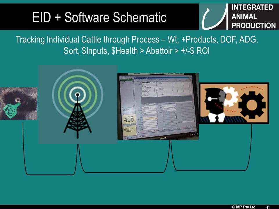 © IAP Pty Ltd 41 EID + Software Schematic Tracking Individual Cattle through Process – Wt, +Products, DOF, ADG, Sort, $Inputs, $Health > Abattoir > +/