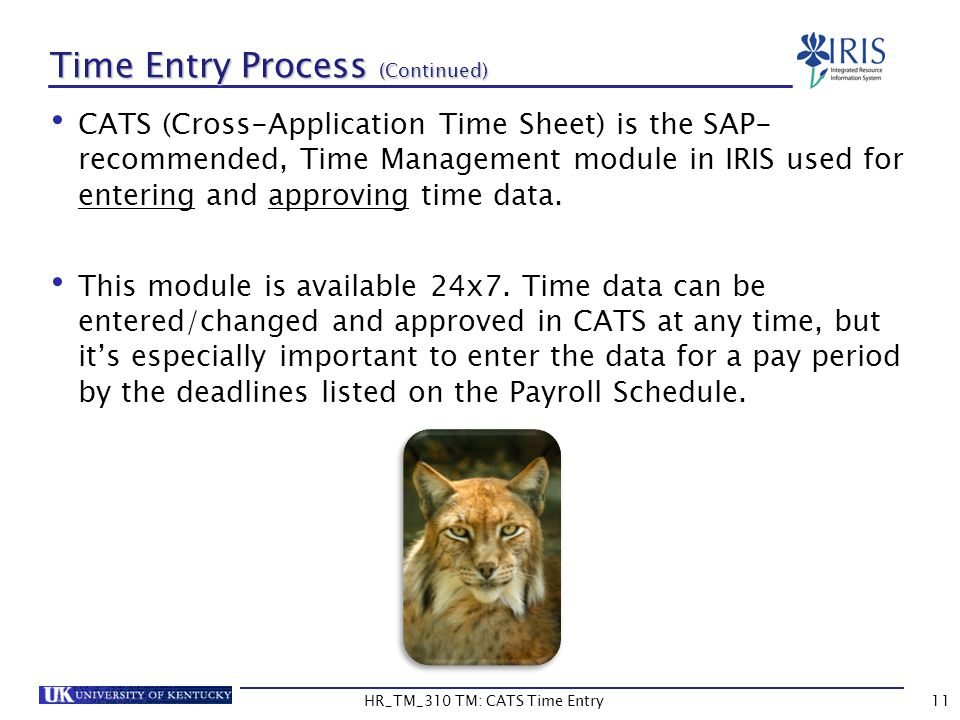 HR_TM_310 TM: CATS Time Entry11 Time Entry Process (Continued) CATS (Cross-Application Time Sheet) is the SAP- recommended, Time Management module in