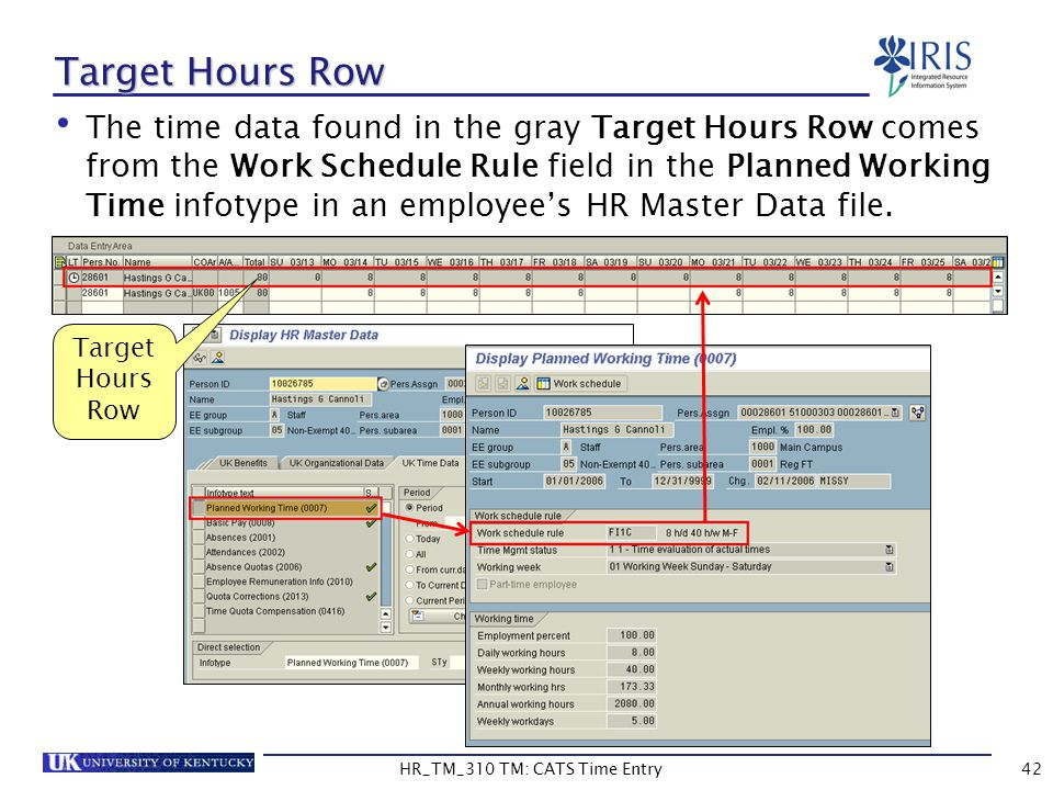 Target Hours Row The time data found in the gray Target Hours Row comes from the Work Schedule Rule field in the Planned Working Time infotype in an e