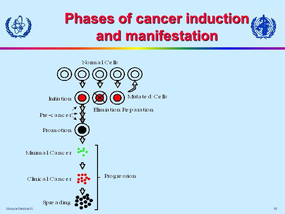 Module Medical IX. 16 Phases of cancer induction and manifestation