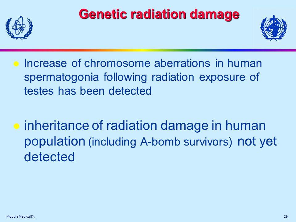 Module Medical IX. 29 Genetic radiation damage l Increase of chromosome aberrations in human spermatogonia following radiation exposure of testes has