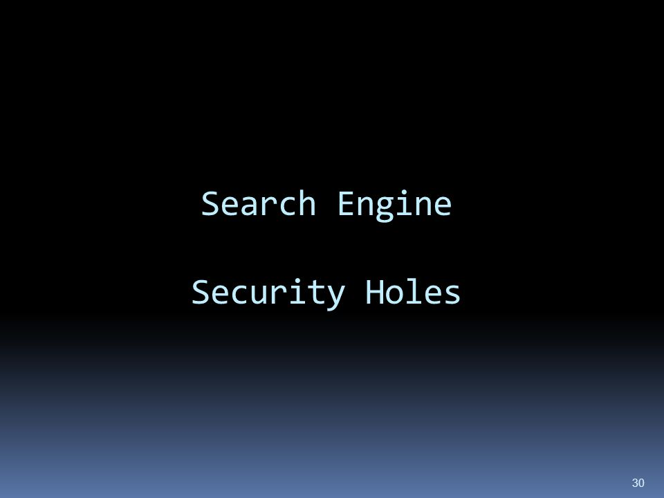 Search Engine Security Holes 30