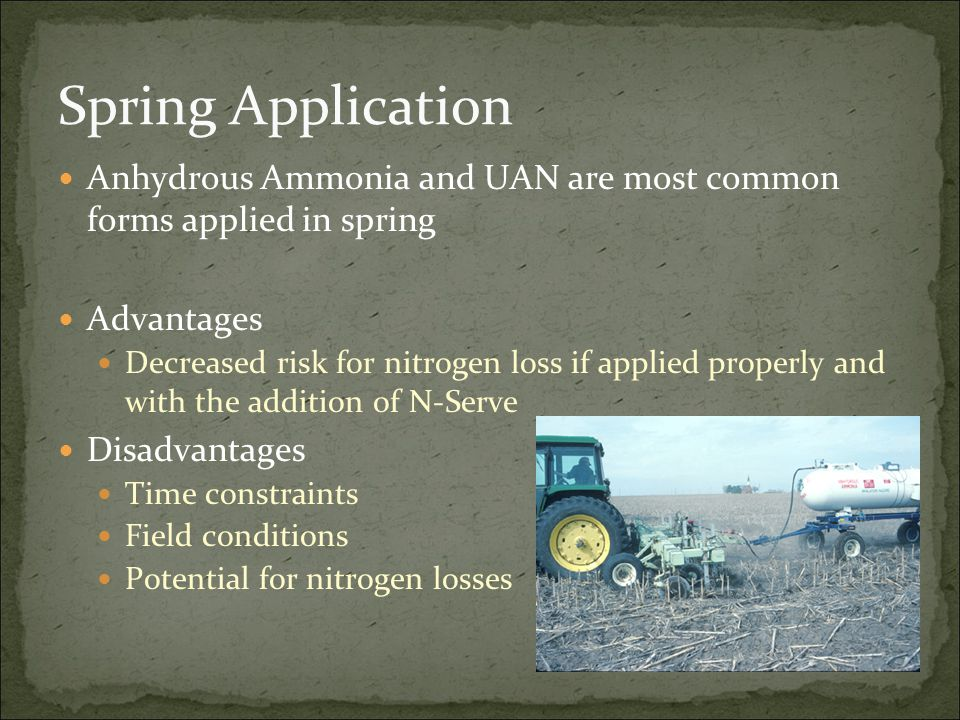 Spring Application Anhydrous Ammonia and UAN are most common forms applied in spring Advantages Decreased risk for nitrogen loss if applied properly a