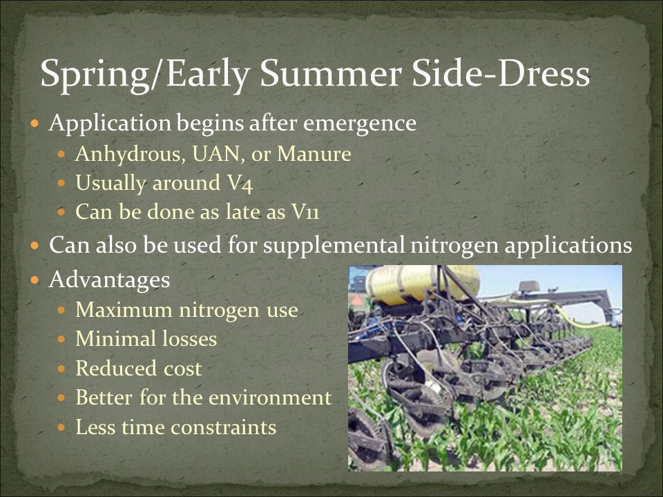 Spring/Early Summer Side-Dress Application begins after emergence Anhydrous, UAN, or Manure Usually around V4 Can be done as late as V11 Can also be used for supplemental nitrogen applications Advantages Maximum nitrogen use Minimal losses Reduced cost Better for the environment Less time constraints