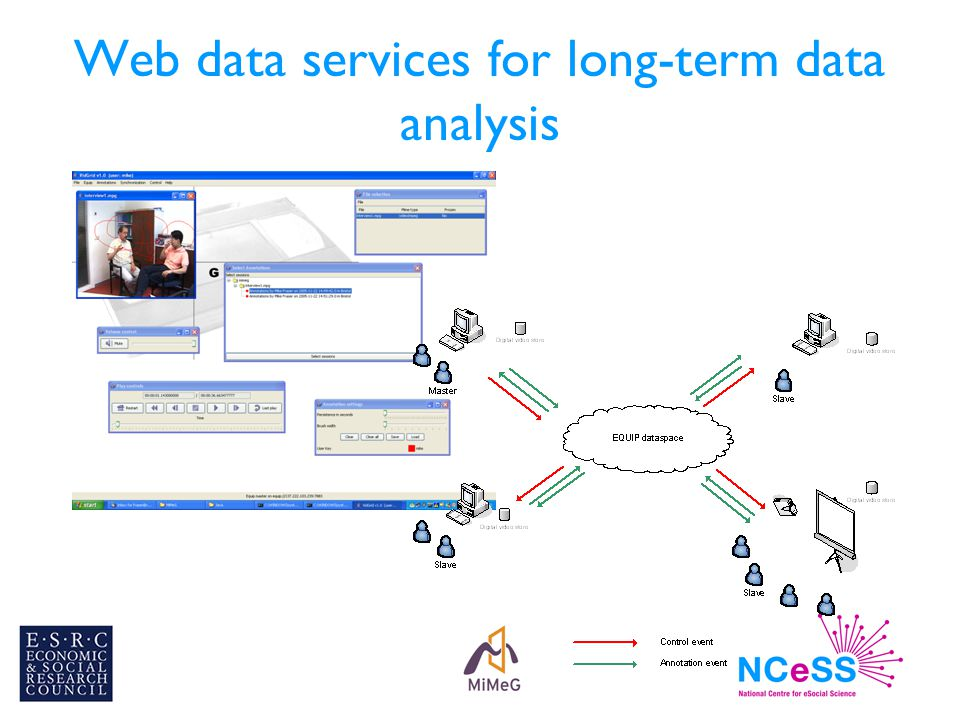 Web data services for long-term data analysis
