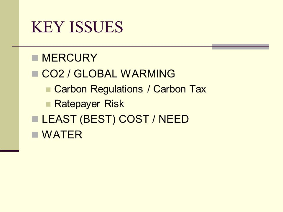 KEY ISSUES MERCURY CO2 / GLOBAL WARMING Carbon Regulations / Carbon Tax Ratepayer Risk LEAST (BEST) COST / NEED WATER