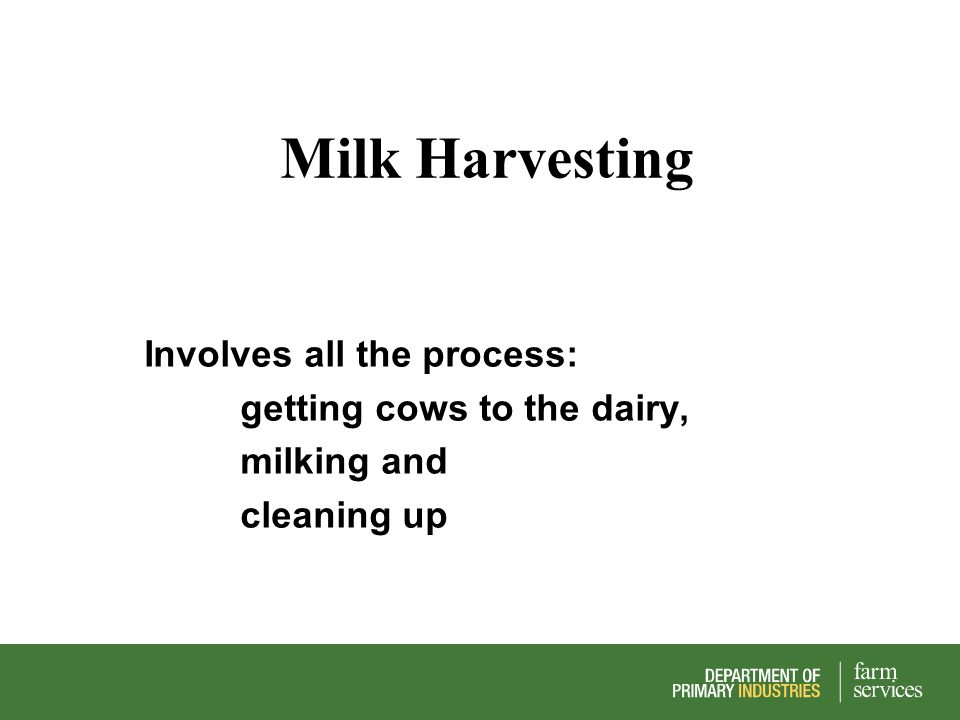 Milk Harvesting Involves all the process: getting cows to the dairy, milking and cleaning up