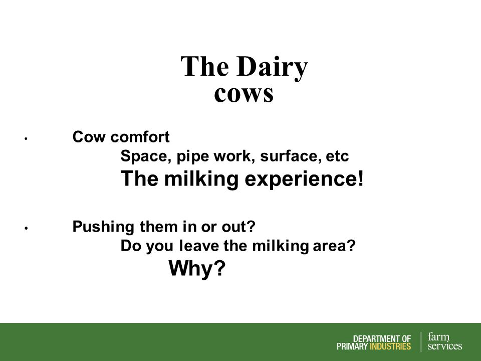 The Dairy cows Cow comfort Space, pipe work, surface, etc The milking experience! Pushing them in or out? Do you leave the milking area? Why?
