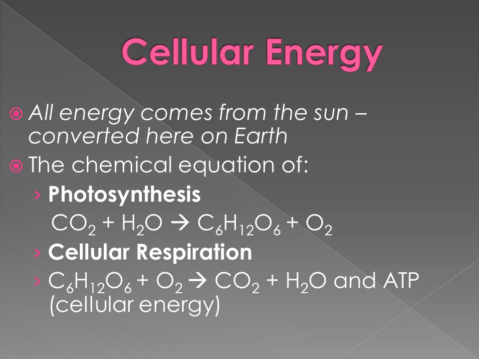 All energy comes from the sun – converted here on Earth The chemical equation of: Photosynthesis CO 2 + H 2 O C 6 H 12 O 6 + O 2 Cellular Respiration C 6 H 12 O 6 + O 2 CO 2 + H 2 O and ATP (cellular energy)