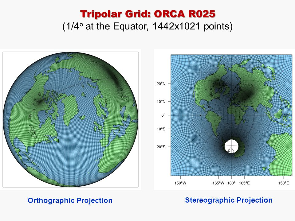 Tripolar Grid: ORCA R025 (1/4 o at the Equator, 1442x1021 points) Orthographic Projection Stereographic Projection