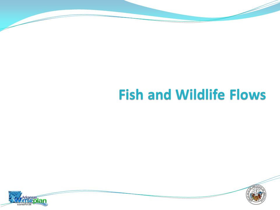 Fish and Wildlife Flows