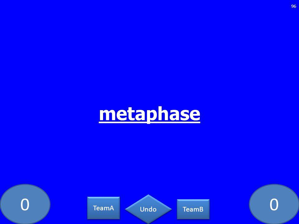 00 metaphase 96 TeamA TeamB Undo