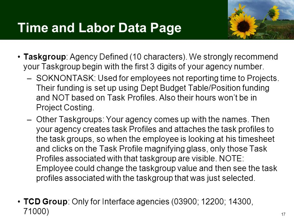 17 Time and Labor Data Page Taskgroup: Agency Defined (10 characters).