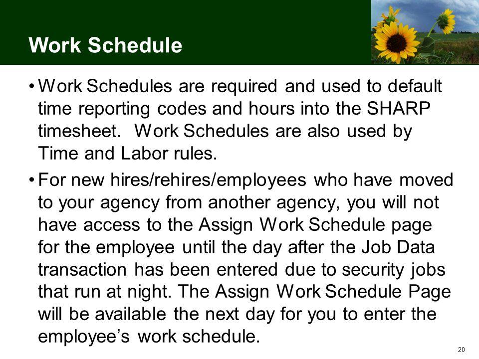 20 Work Schedule Work Schedules are required and used to default time reporting codes and hours into the SHARP timesheet.