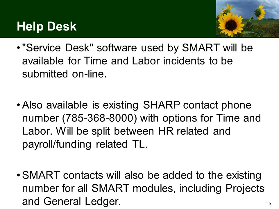 45 Help Desk Service Desk software used by SMART will be available for Time and Labor incidents to be submitted on-line.