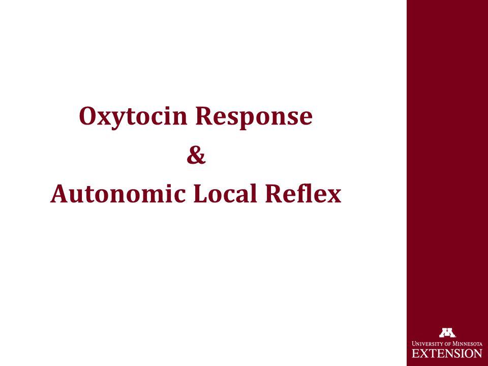 Milk Letdown Mechanism Oxytocin Response & Autonomic Local Reflex