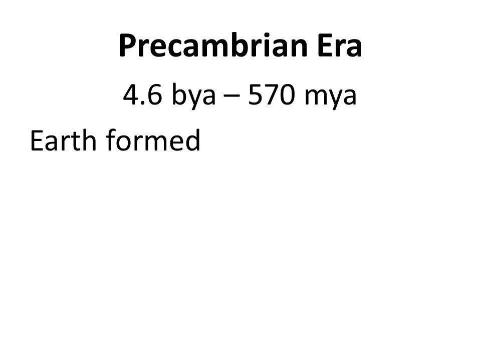 Precambrian Era 4.6 bya – 570 mya