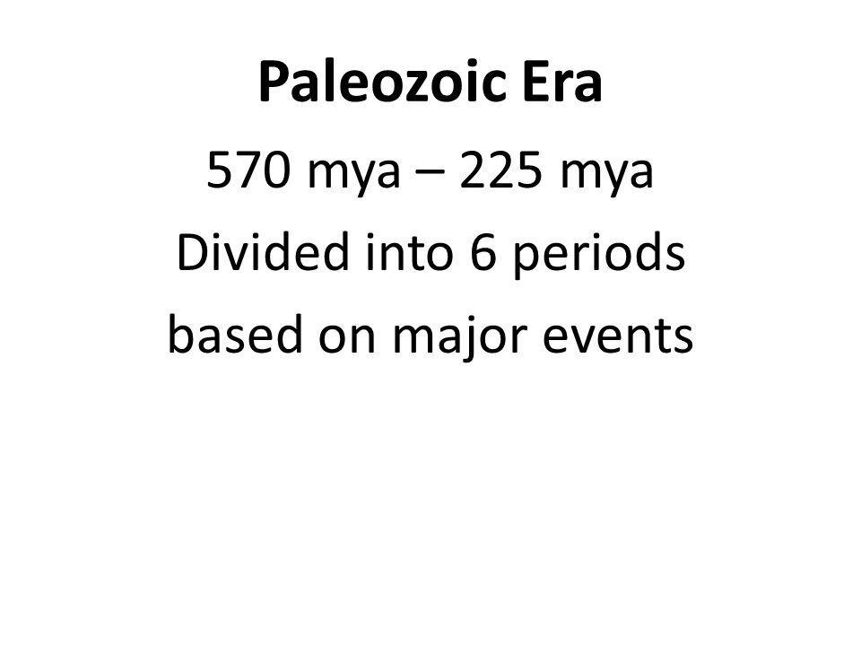 Paleozoic Era 570 mya – 225 mya