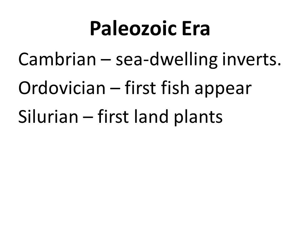 Paleozoic Era Cambrian – sea-dwelling inverts. Ordovician – first fish appear