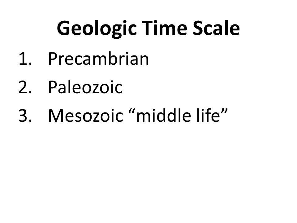 Geologic Time Scale 1.Precambrian 2.Paleozoic 3.Mesozoic middle life